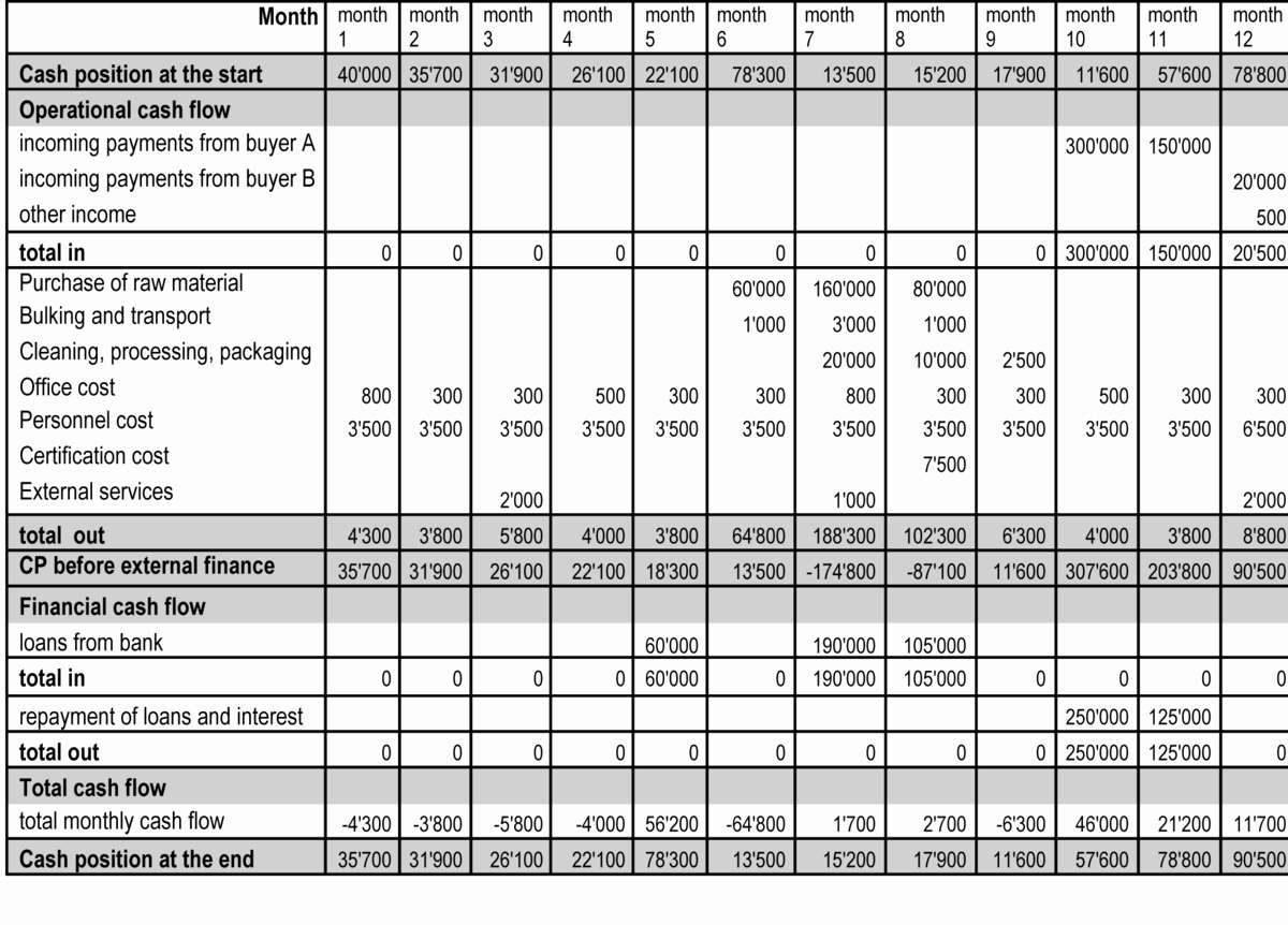 50 Small Business Cash Flow Projection