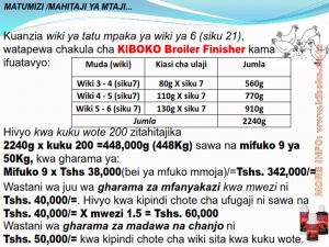 chicken management swahili 020 300x225 - Ufugaji wa kuku kwa njia ya kisasa