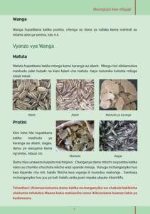 kutengeneza vyakula 007 211x300 - Utengenezaji wa vyakula vya kuku kuanzia vifaranga hadi wakubwa