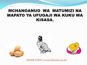 chicken management swahili 008 - Ufugaji wa kuku: namna ya kuanza na mchanganuo wa mapato na matumizi