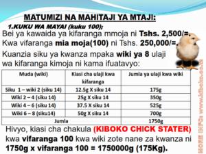 chicken management swahili 009 300x225 - Ufugaji wa kuku: Namna ya kuanza na mchanganuo wa mapato na matumizi