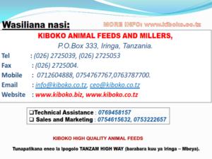 chicken management swahili 029 300x225 - Ufugaji wa kuku: Namna ya kuanza na mchanganuo wa mapato na matumizi