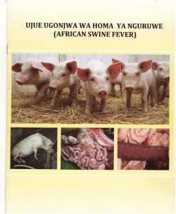 Pict1 - Ujue ugonjwa wa homa ya nguruwe (african swine fever)