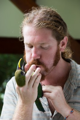 Ornithologist Cody Cox measures the body fat content of an emerald toucanet on the campus of the University of Georgia in Costa Rica on Wednesday, June 22, 2016. (Photo/Rachel Eubanks, www.rachel-eubanks.com)