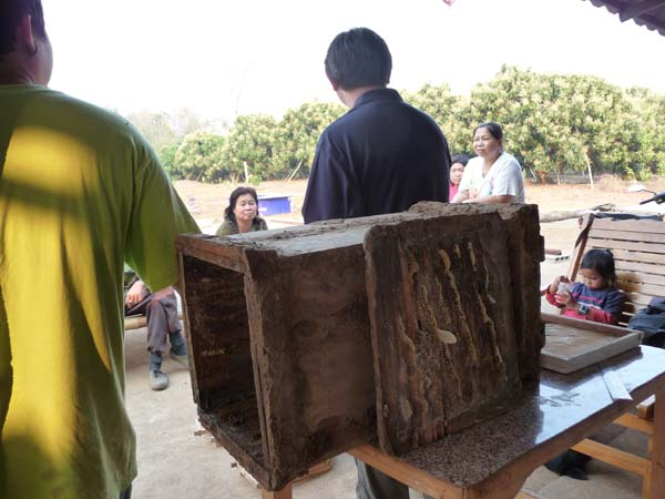 Current type of beehive that are used by some of the villagers to collect honey.