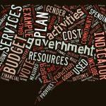 Common budget terminologies