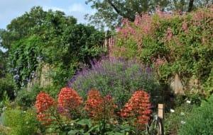 trial gardens 2