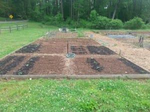 Soil Testing for Georgians - a guest post by Jason Lessl