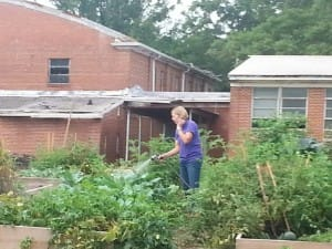 Patti Beckham waters a few plants.