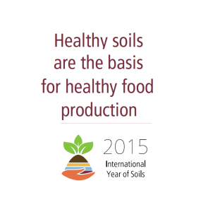 International Year of Soils: Raising Awareness of Soil's Importance