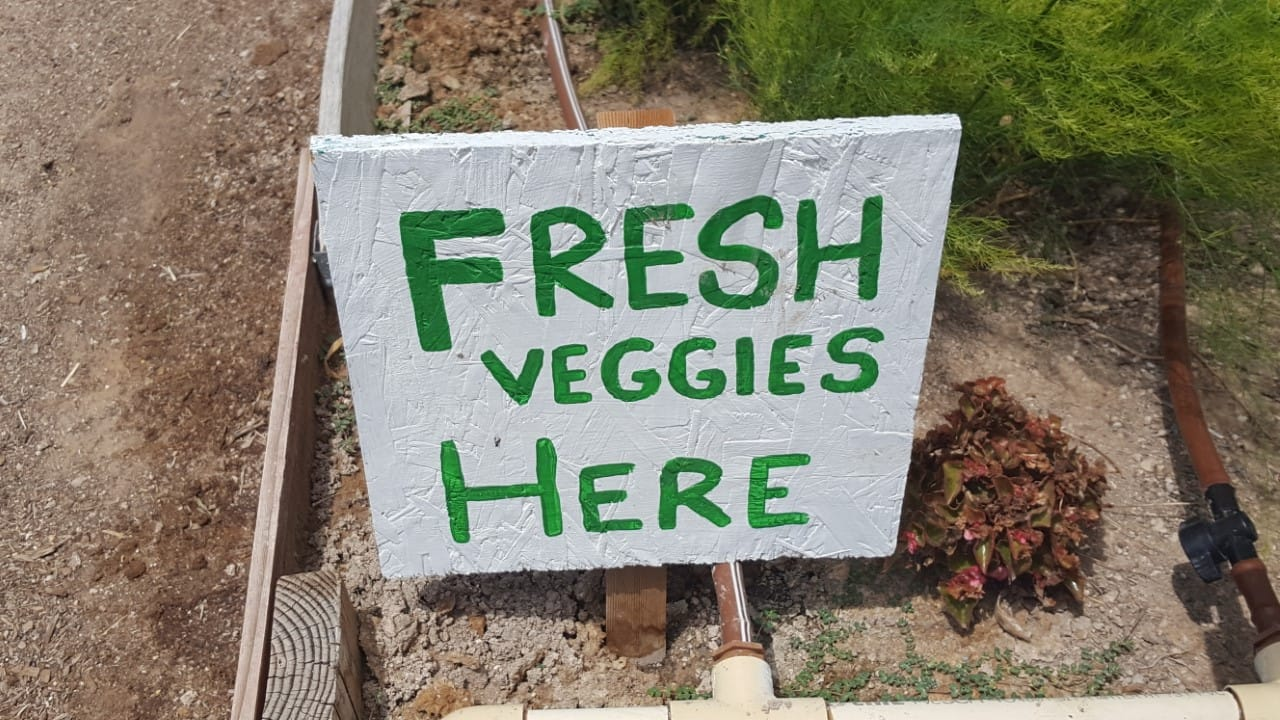 Las Vegas Roots Fresh Veggie Sign