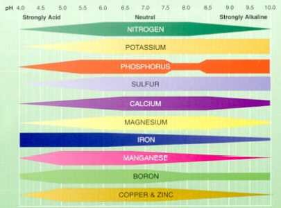 Soil pH basics for Georgia Gardeners