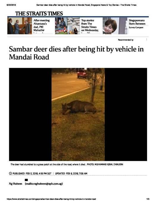 Sambar deer dies after being hit by veh.._Page_1