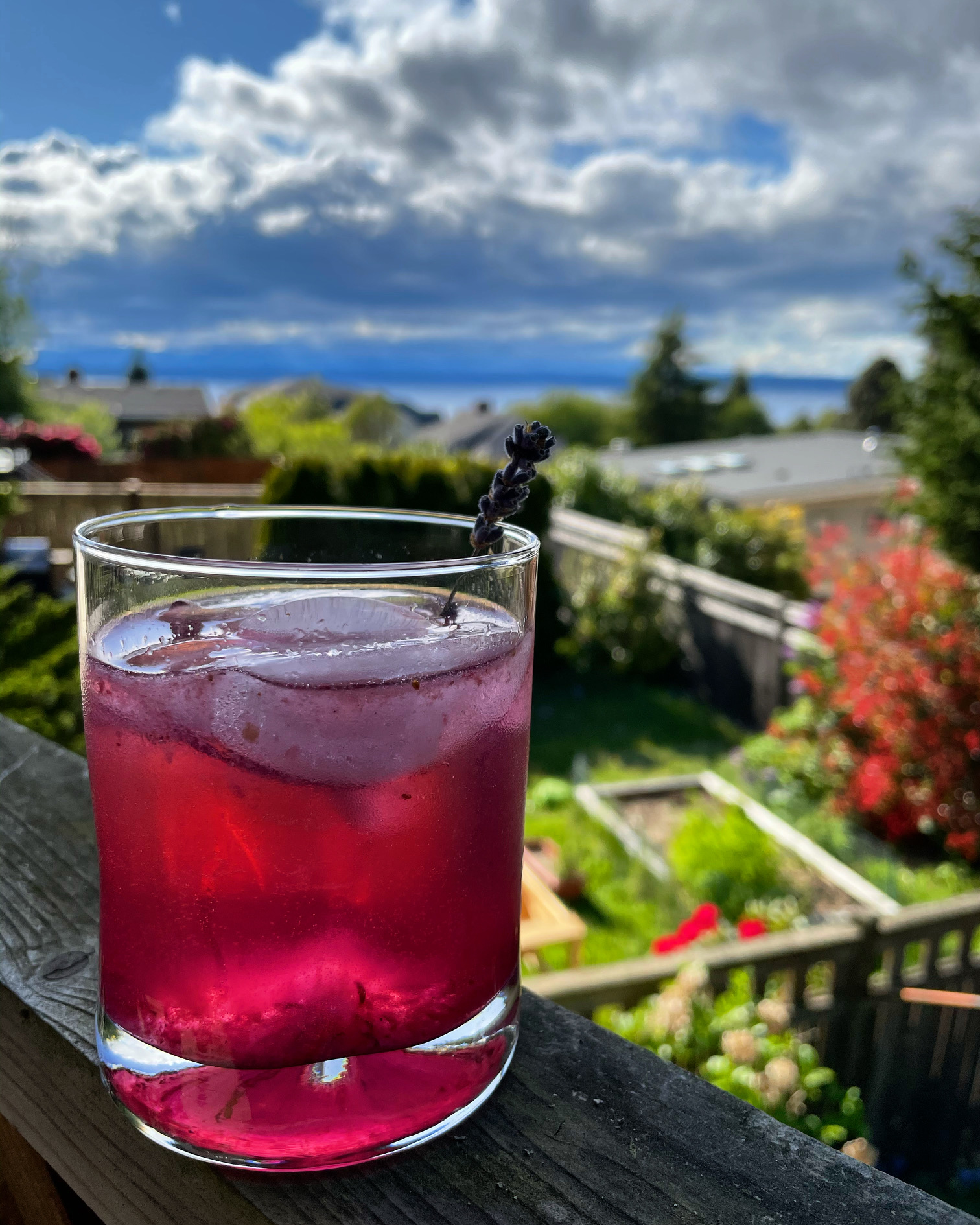 Lavender and blueberry gin and tonic
