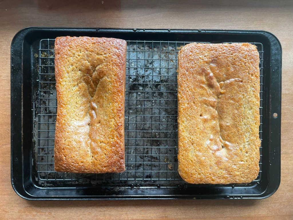 two juniper lime cakes baked in different sized pans