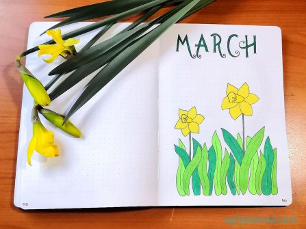 March bullet journal theme daffodils