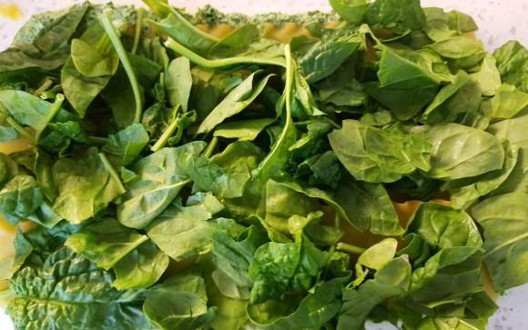 Vegan Spinach Pesto Lasagna Recipe
