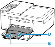 Canon : Manuais Inkjet : E4200 series : Imprimindo Fotos