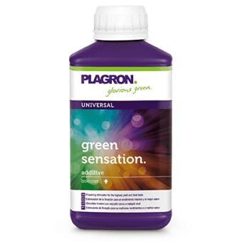 green sensatition