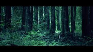 baths-lovely-bloodflow-video