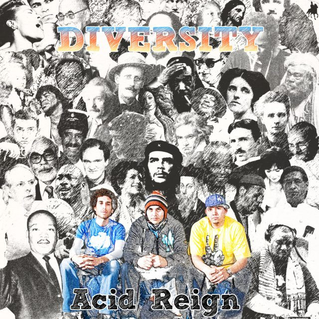 Acid Reign - Diversity