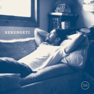 serengeti-amnesia