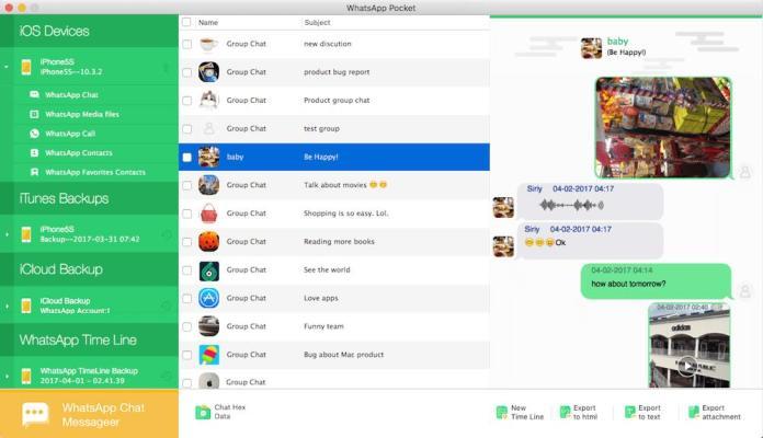 Method 2: Download WhatsApp on IPad/iPhone with WhatsApp Pocket