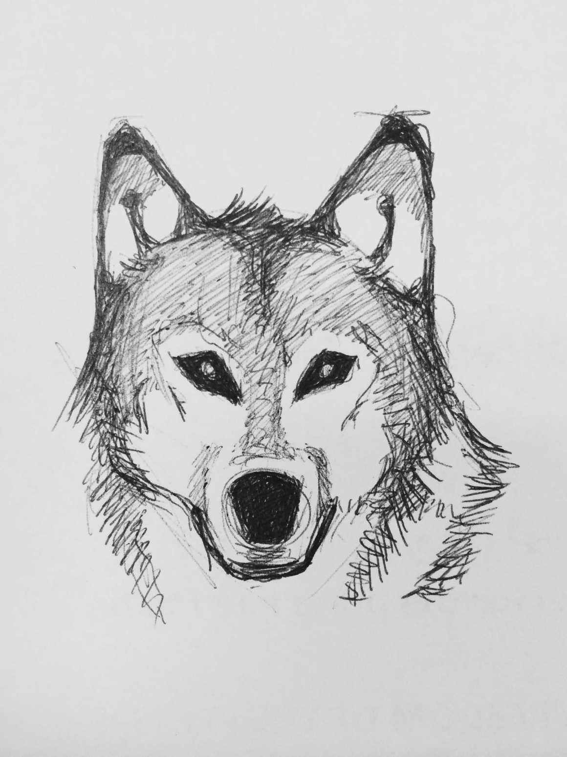 There's a Wolf: a poem