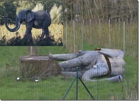olifantenleed