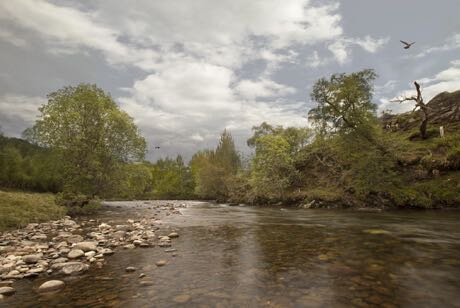 Uisge Source-speyside_