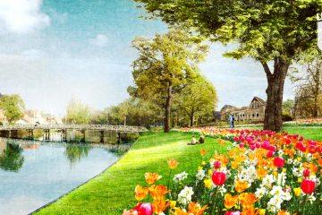 Bloemen in Clarissenbolwerk, Alkmaar
