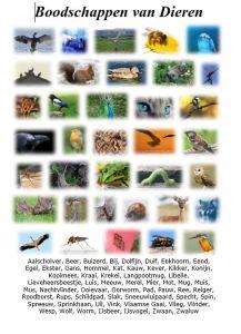 Voorkant-Boek-Boodschappen-van-dieren-uitjebewust