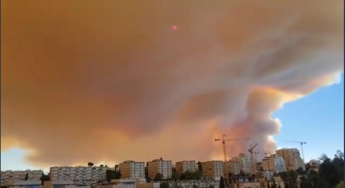 A tűzoltók késő estig folytatták a főváros mellett pusztító lángok elleni küzdelmet   Új Kelet online