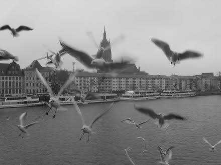 Őszi Németország – András Orsolya fotói