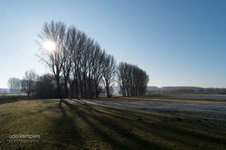 Niederrhein V