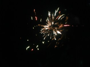 A multi-colored firework in welcoming the new year