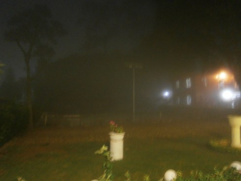 One very foggy evening at S.A.G. Institute (3)