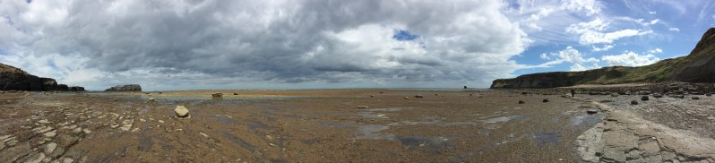 Saltwick Bay 20.08 (10)