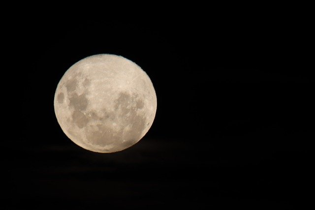 Full Moon Detail Supermoon  - Nel_Botha-NZ / Pixabay