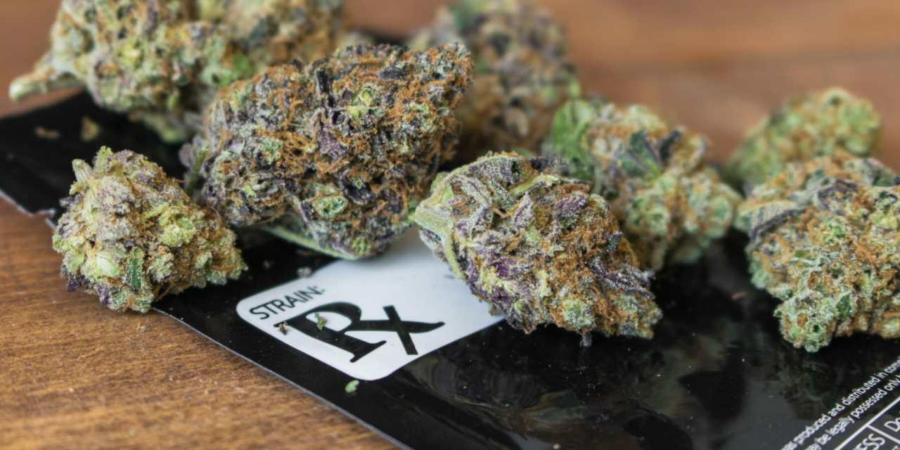Medical Marijuana Cards Remain Popular