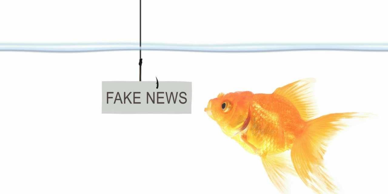 Fake News Fed to Fourth District Voters