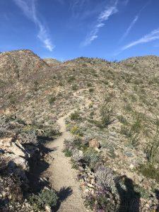 bear creek canyon trail