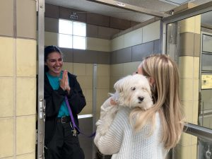 Animal Shelters Temporarily Closing to Public
