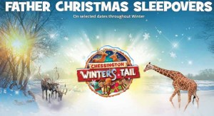 Chessington World Of Adventures Father Christmas Sleepover from £28pp