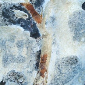 East - nice flint sponge impression on flint, close up