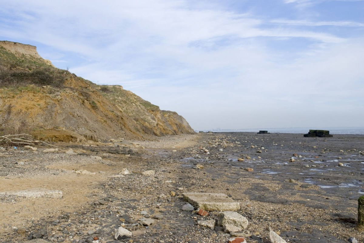 walton on the naze uk fossil collecting