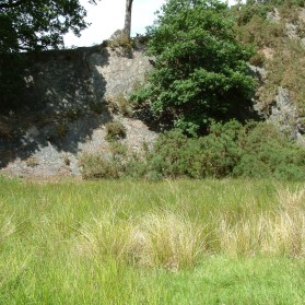 Hodgson How Quarry – UK Fossil Collecting