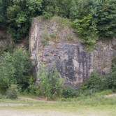 Butts Quarry – UK Fossil Collecting