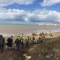 Fossil Collecting at Compton Bay.