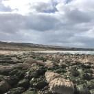 Whitepark Bay Antrim 18.03 (13)